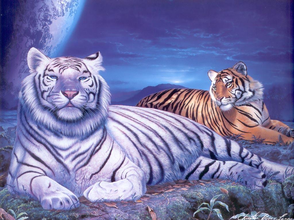 壁纸 动漫 动物 虎 卡通